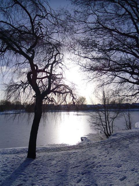 Home Jules: Lake in winter