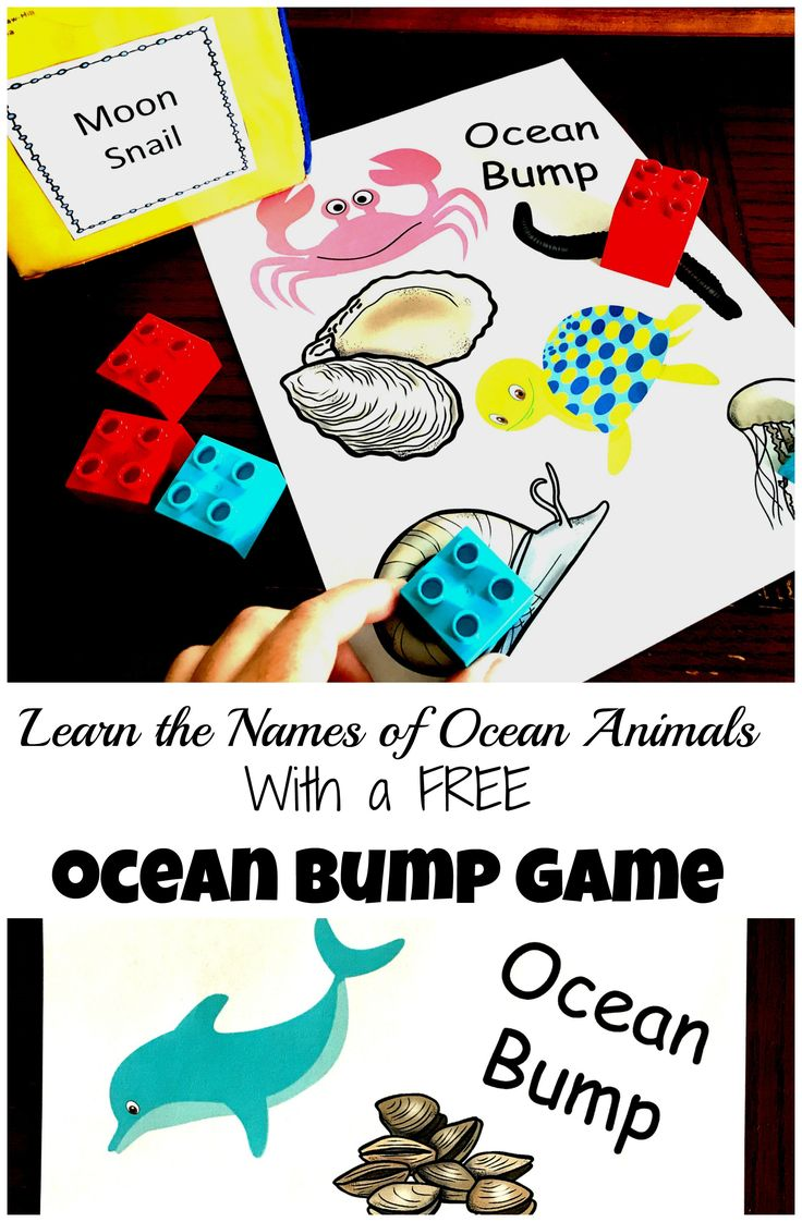 Heading to the beach and want your kiddos to learn the names of ocean animals they might see? Check out these fun, and exciting BUMP games.