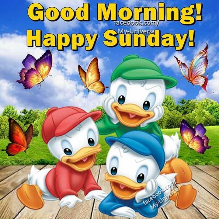 Good Morning, Happy Sunday good morning sunday sunday quotes good morning…