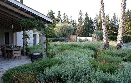 Barcelona Garden by Piet Oudolf #gardening