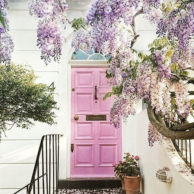 Wisteria Home In 2019: Beautiful Pink Doored House With Wisteria From Notting