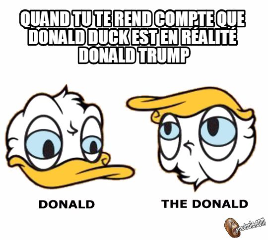 The Donald Duck... image drole