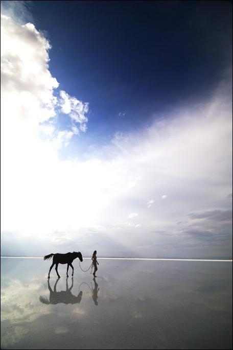 .Beautiful Photos, Dreams, Hors Girls, Reflections, Horses Girls, Beach Horses, Photography, Heavens, Beach Walks