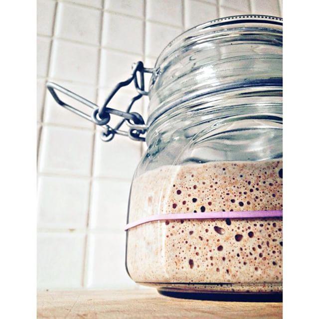 it's alive!! #sourdoughstarter #homemadebread #homemadefood #instafood #passion #bake #foodporn #love #realbread #passion #kuchareczka #sourdough #vscocam #healthyfood #health #nature #surdeg #surdegsbröd #breadlife #homebaked #eko #naturalyeast by jakietomaznaczenie