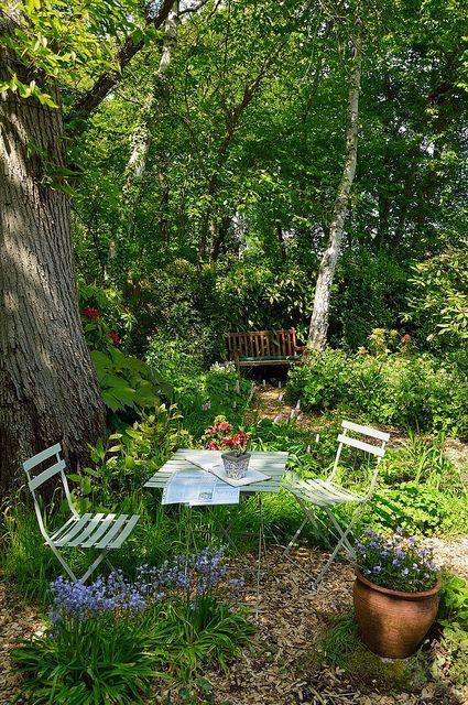 """Jardin """"sauvage"""" avec paillis de copeaux de bois, ..."""