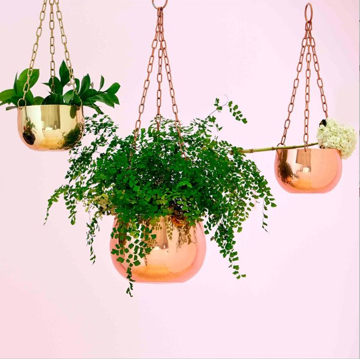 Drop dead gorgeous, real copper & brass, hanging planters! The perfect and most luxurious way to bring the outdoors in, featuring a sturdy chain. Just add the perfect plant and get hanging! Available in two sizes. Shop online or in-store now! http://www.finderskeepersgifts.com.au/collections/planters-pots-terrariums/products/copper-hanging-planters