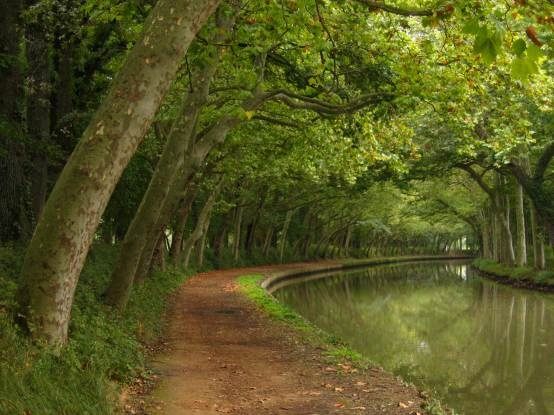 Canal du Midi in Languedoc, France