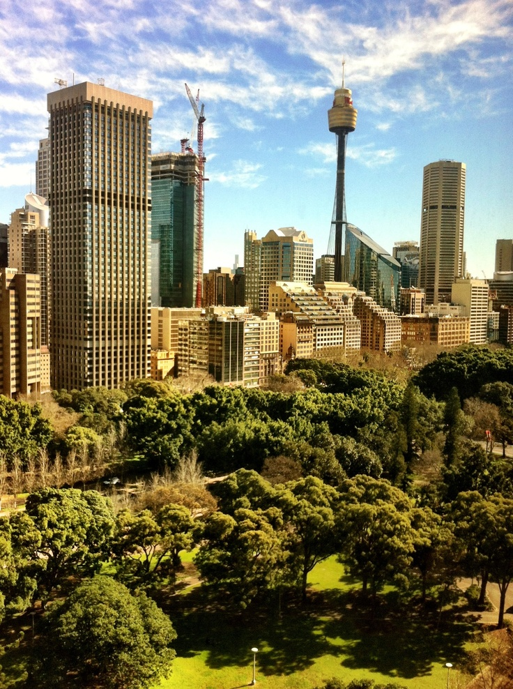 View of Sydney city across Hyde Park