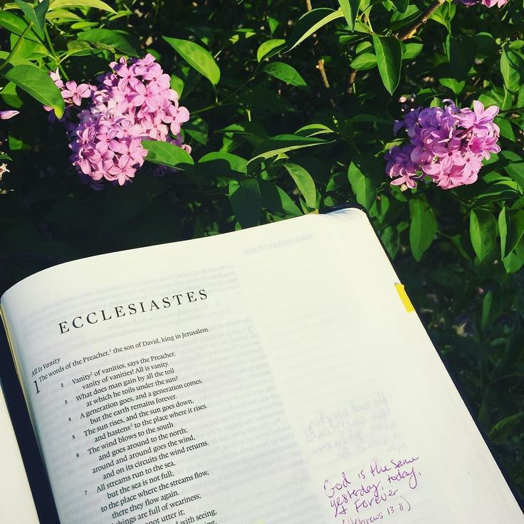I started doing a study through Ecclesiastes this week with @lovegodgreatlyofficial and I am loving it!!! My book still is t here but they make it super easy to do even without the workbook.   #ecclesiastes #vanityofvanities #biblegram by heather.hart