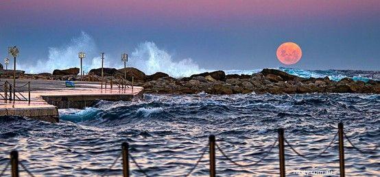 Super Moon, Clovelly beach, Sydney, NSW, Australia. Photo: Richard Hirst