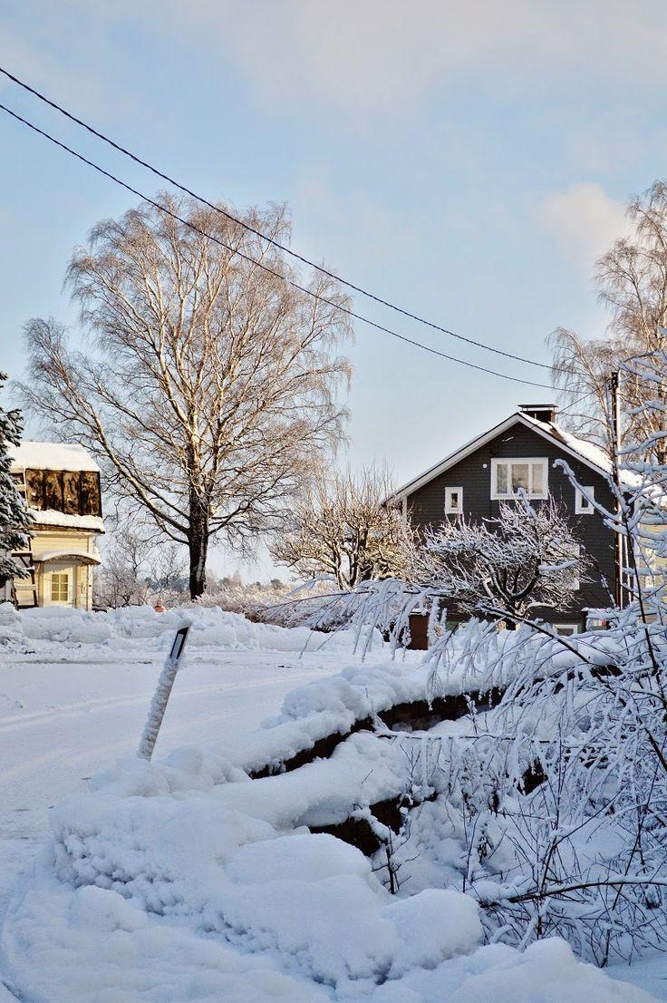 Tiutinen in February
