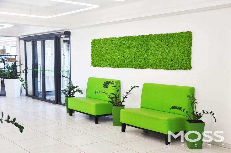 Ściana zielona w formie obrazu bez ramy. Hotel Uniejów
