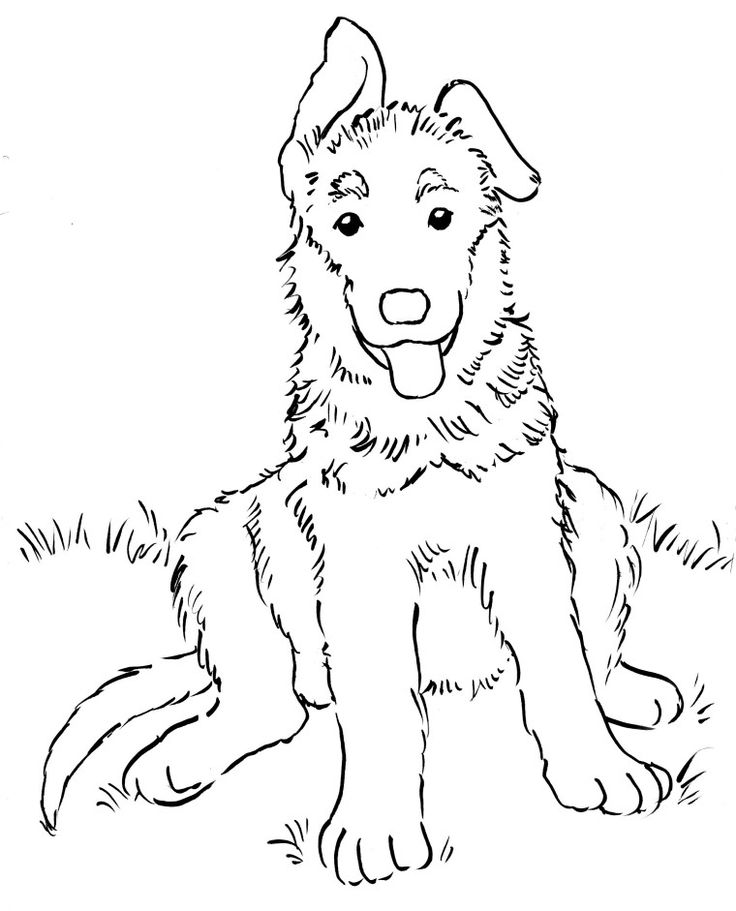 coloring pages of stephen - photo#21