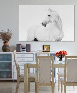 B&W Horse Canvas Art Print