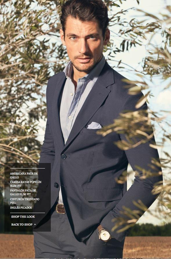 Massimo Dutti Look Book 2013  Model: David Gandy