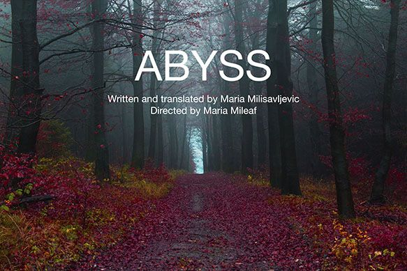 The Play Company presents the U.S. premiere of ABYSS at Theaterlab NYC.  November 7 – December 6. For Previews through Nov. 15 tickets are $20 General Admission / $35 Premium Reserved (Student Tickets: $15 advance/$10 Rush w/ID). Ticket link: https://web.ovationtix.com/trs/pr/950751