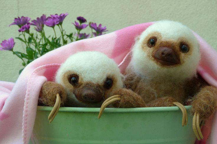 Needle felted life size Baby Sloths | Flickr - Photo Sharing!