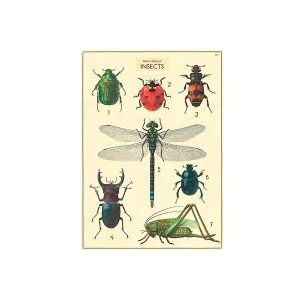 Isot hyönteiset -juliste
