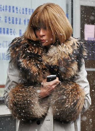 Anna Wintour: Annawintour, Fashion, Inspiration, Winter, Street Style, Anna Wintour, Style Icons, Fur, People
