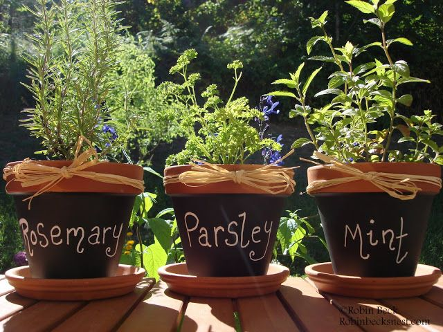 The Robin's Nest: Chalkboard Clay Pots...