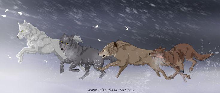 Wolfs Rain by Noive on DeviantArt