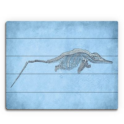 "Click Wall Art Liopleurodon Skeleton Graphic Art on Plaque Size: 16"" H x 20"" W x 1"" D"