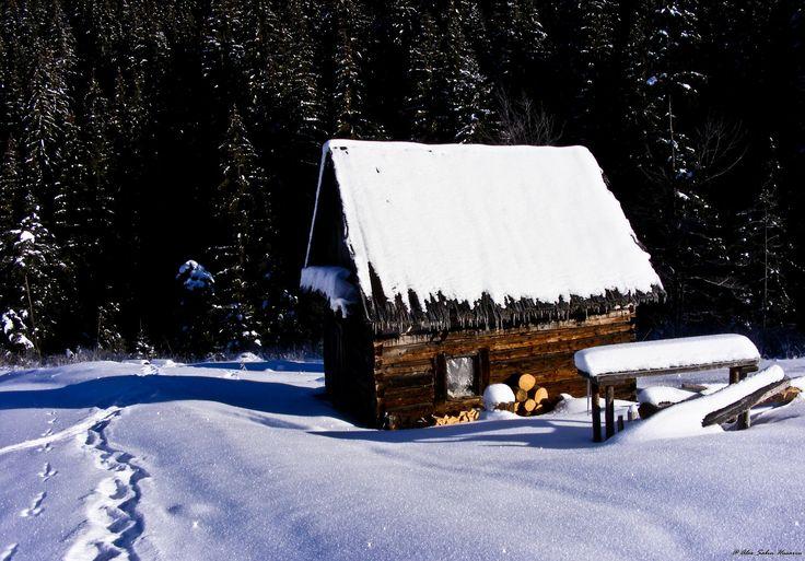 Hard winter by Alex Husariu on 500px