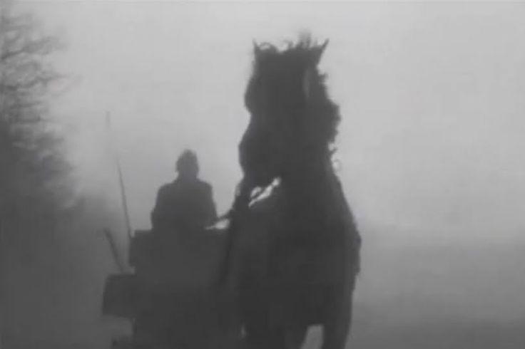 Aleteia te invita al cine: El caballo de Turin - Aleteia