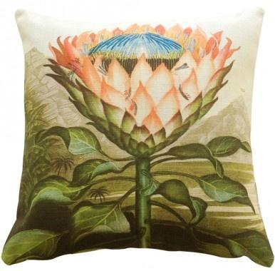 Cushion - Protea - Kerrie Brown