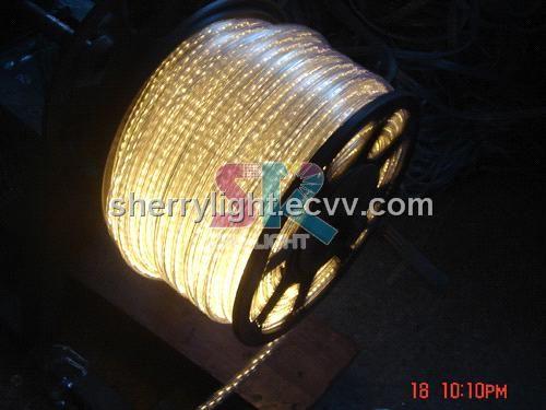 Warmwhite LED Rope Light (SRLED-2W100WW) - China Rope Light, SRLED