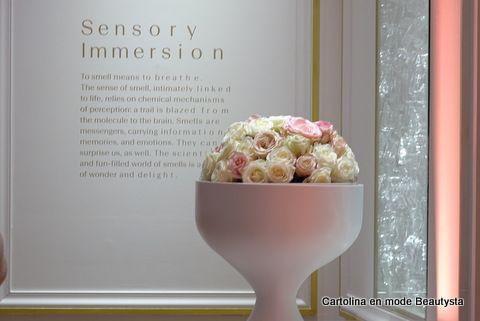 Immersion sensorielle au Grand Musée du Parfum https://cartolinabeautysta.wordpress.com/2016/12/14/le-grand-musee-du-parfum-ouvre-ses-portes-a-paris