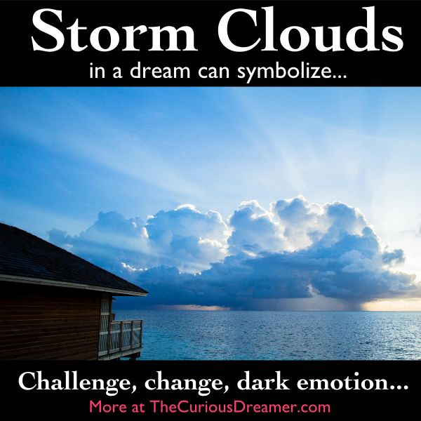300 Best What Dreams Say Images On Pinterest Dream Dictionary