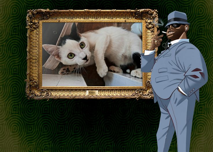Caturday Grooving w Russel