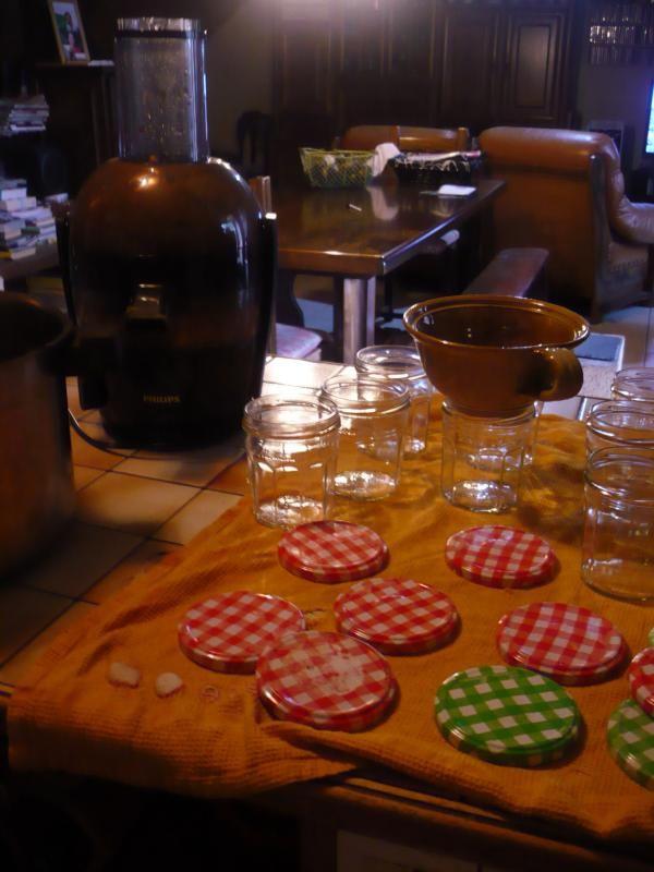 Gelée de pomme, coing, citron (à la centrifugeuse).
