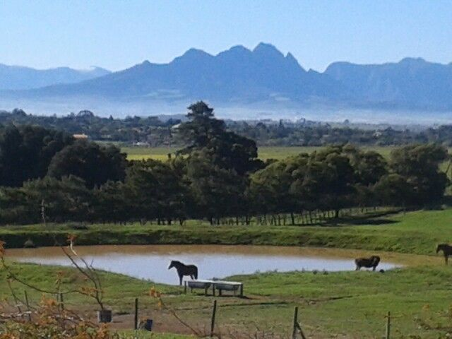Views of Simonsberg from Durbanville