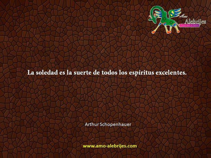 Frases celebres Arthur Schopenhauer 2