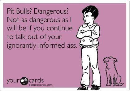 YES!!!....they say don't mess with a pit bull...you need to worry about the owner more than the dog! Think about it...