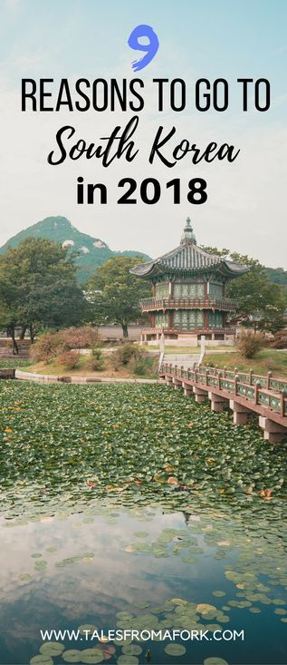 Ever wanted to go to South Korea for food, nature, and historic site seeing? There's no better year than 2018. Check out what I did in South Korea and the 9 reasons you should go to South Korea in 2018.