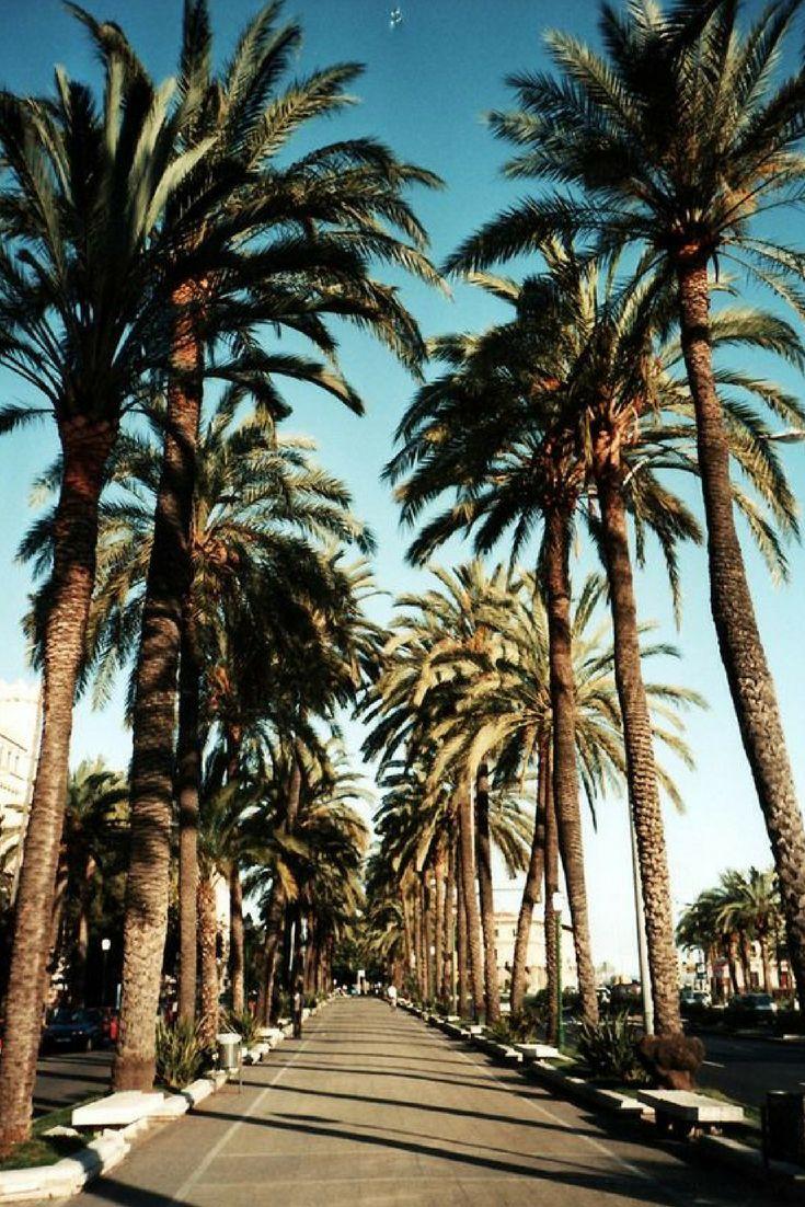 Trek jouw stoute schoenen aan en vlieg naar AMERIKA ❗️ Bezoek bijvoorbeeld Los Angeles en hang de ster 🌟 uit in HollyWood >>> https://ticketspy.nl/deals/inpakken-klm-ticket-new-york-los-angeles-las-vegas-va-e304/