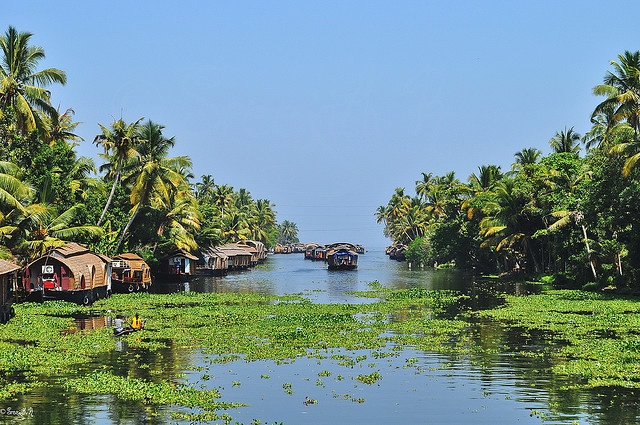 Backwaters of Kerala, India.