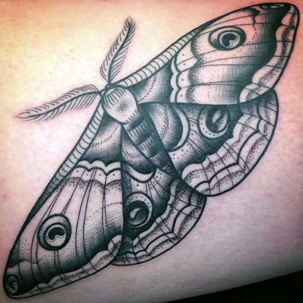 Best 25 Grey Ink Tattoos Ideas On Pinterest: Best 25+ Moth Tattoo Ideas On Pinterest