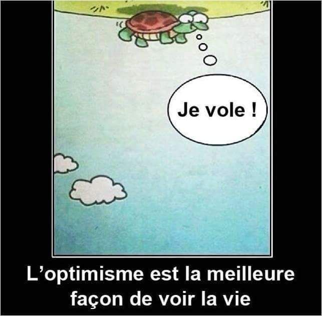 French optimism cartoon quote