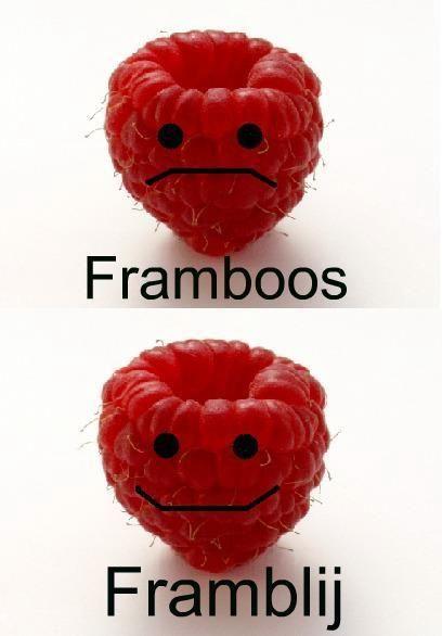 Framboos. verhaal vertellen over Fram die iets gedaan heeft of dat er iets…
