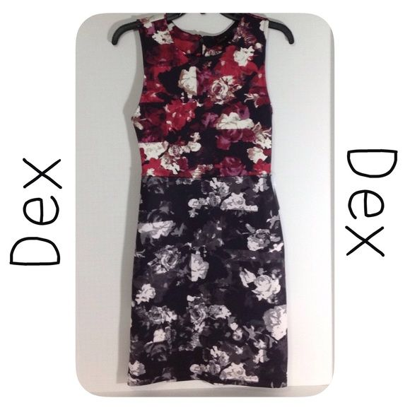 Dex Floral Color Block Dress Good Condition.  Floral Plum Print.  Polyester/Spandex mix.  Made in China. Happy Poshing! Dex Dresses