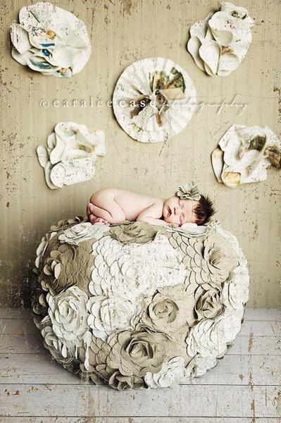 newborn newborn: Newborns Lov, Cute Baby, Newborns Baby, Grey Flowers, Newborns Cut Baby, Beans Bags, Newborns Pics, Baby Photographer, Newborns Photography