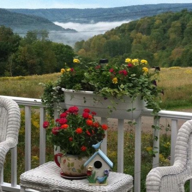 #Heaven on earth, Ellicottville, NY  Local Ellicottville NY Directory of Local Businesses   Like, share Thanks    http://www.linksbuffalo.com/place/ub-anderson-gallery/