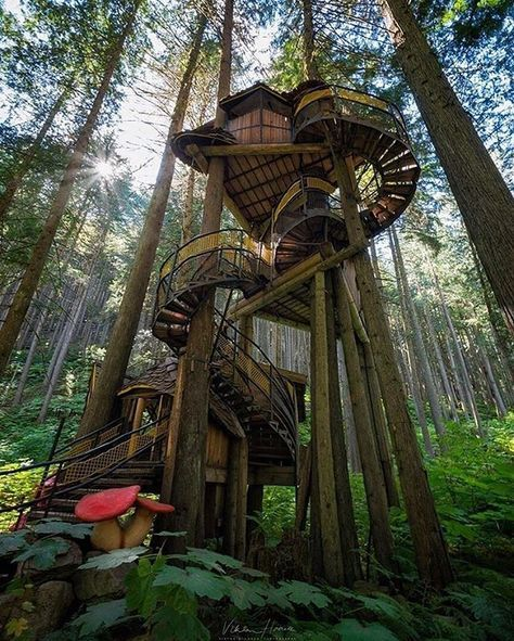 The aptly named Enchanted Forest is a must-see along the Trans-Canada Highway, between Revelstoke and Sicamous in British Columbia. It is BC's tallest, highest Tree House // Photo by Viktoria Haack // Pin curated by @seattlestravels for @explorecanada
