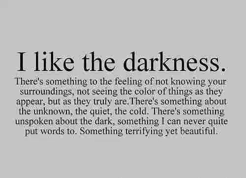 """there's something unspoken about the dark, something i can never quite put words to. Something terrifying yet beautiful"""