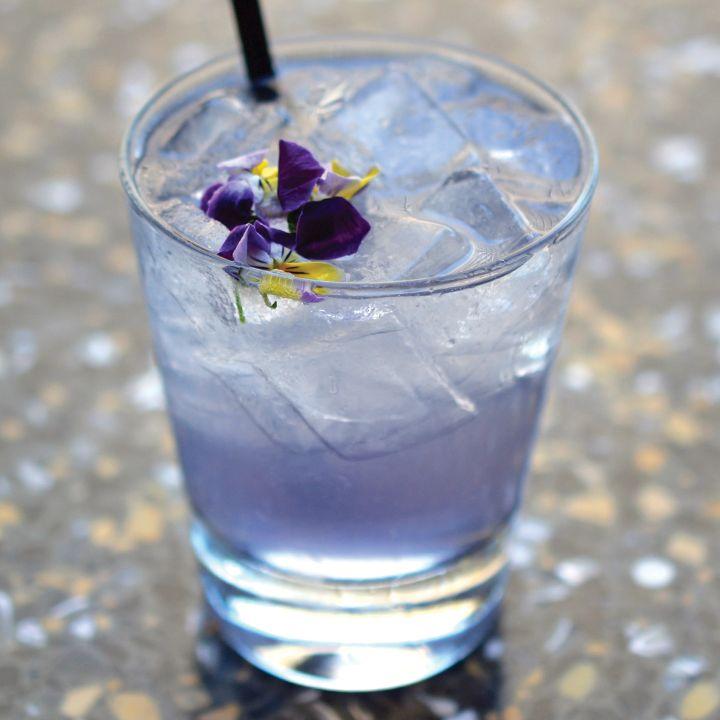 Spring Fling, One Market Restaurant San Francisco. Blanco Tequila, crème de violette, St-Germain elderflower liqueur