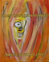 Meager Gropings in Madness -Poetry